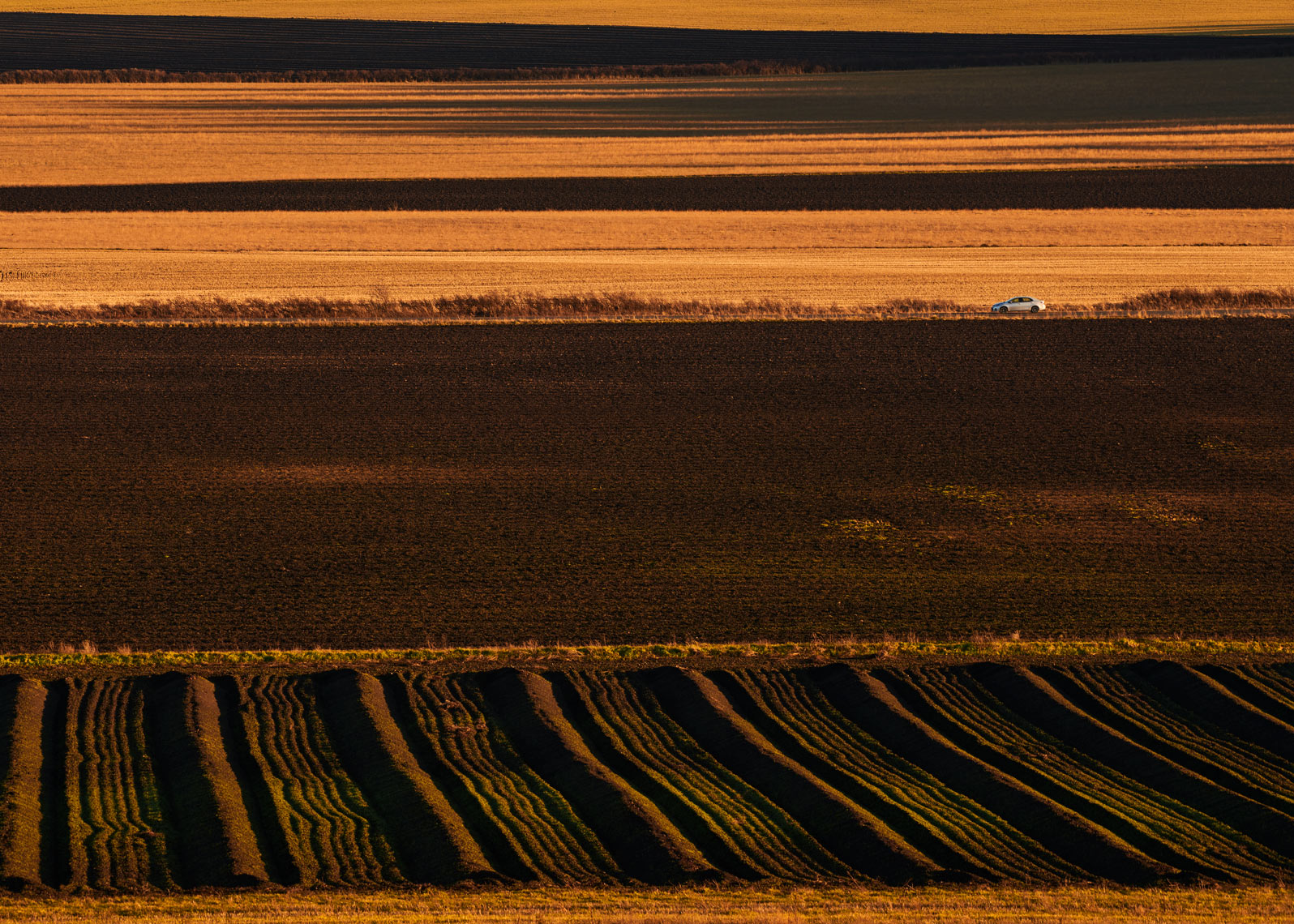 Landscape photography of land used for Agriculture