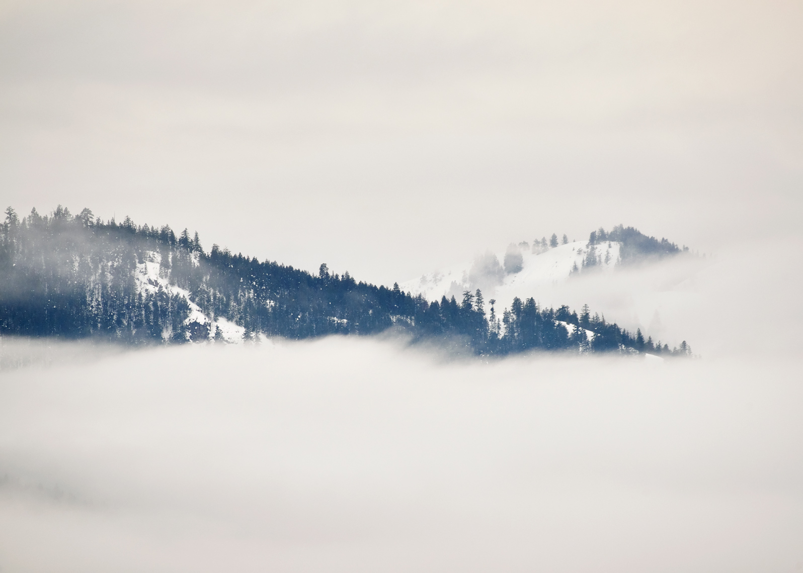 Mountain floats in mist in this landscape photo