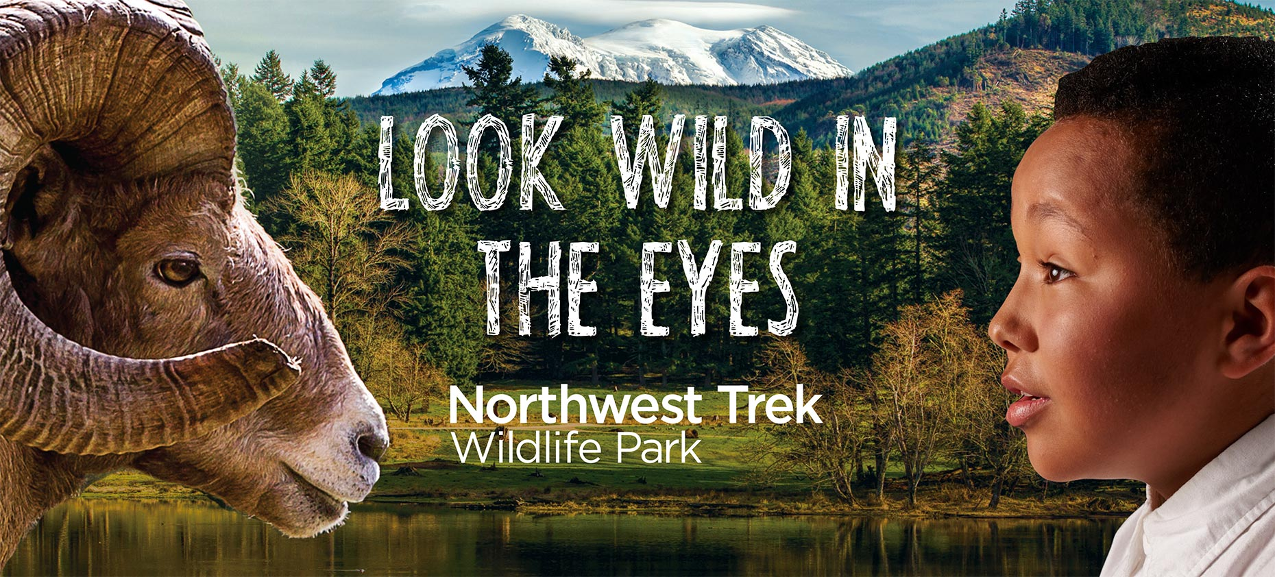 Tear sheet from Northwest Trek advertising campaign