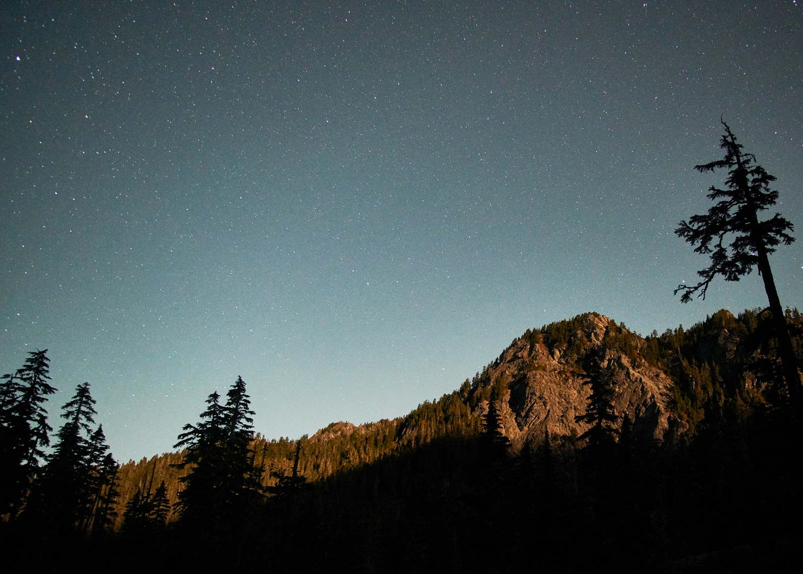 night landscape photography of mountain and trees